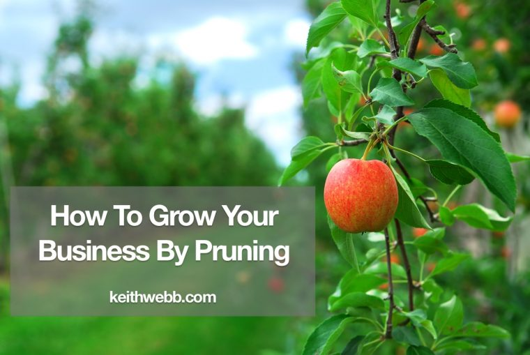 How To Grow Your Business By Pruning - Keith Webb